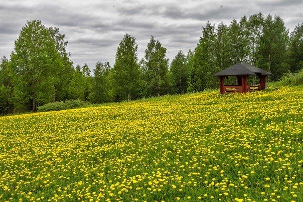 финляндия 5