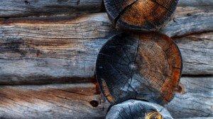 Сруб из Выдержанной сухостойной сосны в Финляндии
