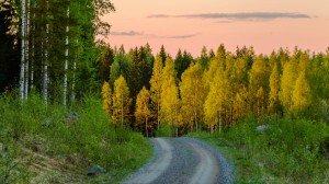 финская Дорога в Rajan Loma