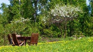 Сад, открытая Вай-Фай Зона в Финляндии