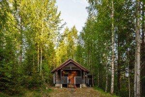 standart cottage 10