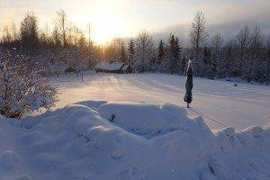 Зимняя природа в Финляндии