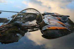 рыбалка10
