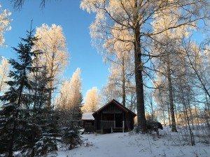 финский коттедж в зимнем лесу