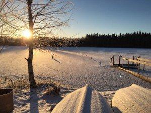 Природа у коттеджа в Финляндии